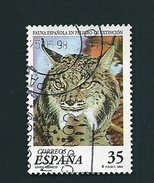 N° 3103 Lynx Pardelle    Espagne   Oblitéré 1998 - 1991-00 Gebraucht