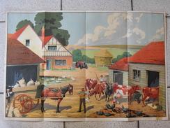 Affiche Tableau élocution Et Vocabulaire. Scène De Ferme Vache Tracteur. Vers 1930. Woolley - Posters
