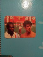 Pocket Calendar Sylvester Stallone 1987 - Calendarios