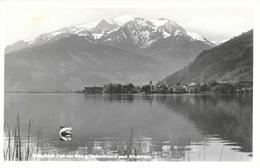 Bergstadt Zell Am See G. Imbachhorn Und Hochtenn - Zell Am See