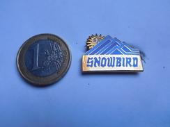 Belle Broche ( No Pin's ) , Snowbird , En EGF - Pin