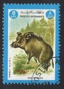 Sus Scrofa Wild Boar Pig Stamp - Farm