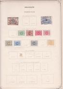 Belgique - Collection Vendue Page Par Page - Timbres Oblitérés / Neufs *(avec Charnière) -Qualité B/TB - Taxes