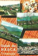 SALUTI DA NASCA (VA) - VEDUTINE - F/G -  N/V - Italia
