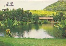 Ile Maurice         H19        Le Val.Parc Naturel - Mauritius