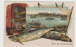 Tur157 / Poste Italiane Constantinople 1909 Nach Paris - Covers & Documents