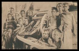 TIMOR - Despolpando Café. ( Ed. Da Missão)  Carte Postale - Timor Orientale