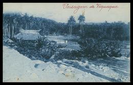 TIMOR - VIQUEQUE - Uma Paisagem De Viqueque. ( Ed. Da Missão)  Carte Postale - Timor Orientale