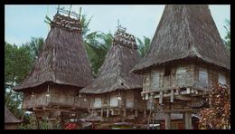 TIMOR - Casas Típicas Da Ponta Leste ( Loré) ( Ed. M. N. F. Nº 11)  Carte Postale - Timor Oriental
