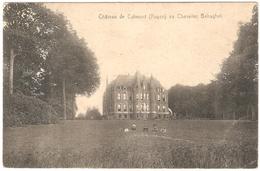 Ruien - Château De Calmont (Ruyen) Au Chevalier Behaghel - Geanimeerd - Kluisbergen