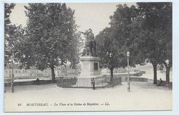 DC 224 - Montereau - La Place Et La Statue De Napoleon. - LL 28 - Montereau