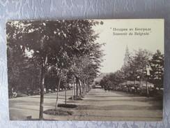 SOUVENIR DE BELGRADE   . CARTE PHOTO - Serbie