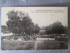 CAMPAGNE D ORIENT. PARC A BESTIAUX - Serbie