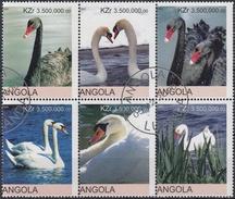 ANGOLA 2000 CISNES USADO