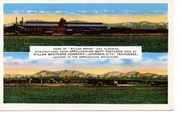 JOHNSON CITY, Tennessee, Miller Brothers Oak Flooring Company Plant, Old Linen Postcard - Johnson City