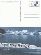 TAAF 1997 Oblitéré En Terre Adélie - Entier Stationery N° 1 NEUF - Enteros Postales