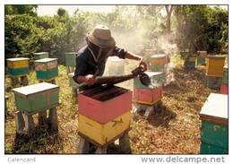 Postal Stationery 2 Stamped C-d26-21- Honeybees , Bees,apiculture - Bienen