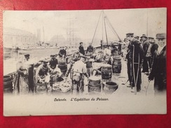 CPA / BELGIQUE / OSTENDE / EXPEDITION DU POISSON / Pour Paris Rue Mollet : - Oosterzele