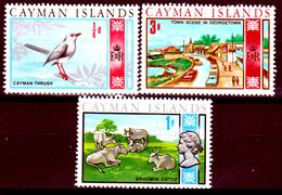Cayman-026 - 1969 - (++) MNH - Privi Di Difetti Occulti. - Cayman (Isole)