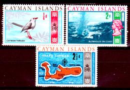 Cayman-028 - 1969 - Privi Di Difetti Occulti. - Cayman (Isole)