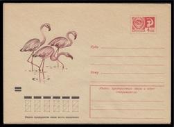 9234 RUSSIA 1973 ENTIER COVER Mint FLAMINGO FLAMANT BIRD VOGEL OISEAU OISEAUX FAUNA 73-595