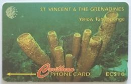 Yellow Tube Sponge 52CSVF