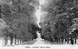 TANLAY - La Grande Allée Du Château - Tanlay