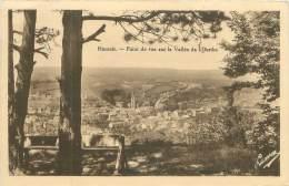 HAMOIR - Point De Vue Sur La Vallée De L'Ourthe - Hamoir