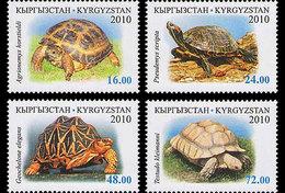 KYRGYZSTAN 2010 Fauna. Turtles - Kyrgyzstan