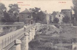Herstal - L'Ile Moncin (animée, Laiterie, E. Dumont, 1908) - Herstal