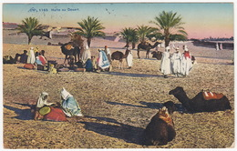 Sousse - Halte Au Desert - (Chameau/Camel/Kameel) - (1927) - (Tunesie) - Tunesië