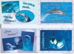 Lot De 12 Cartes Couleur Locale Collection Pictogramme - Animaux - Dauphins - Pas Circulé - Etat Neuf - Dauphins