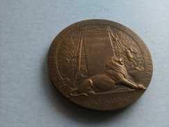 Médaille Militaire Bronze - Francia