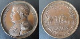 MÉDAILLE Mémorial De Saint Hélène - Napoléon Empereur - France