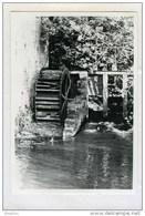 THUILLIES - THUIN (Hainaut) - Moulin/molen - Photo Véritable (1983) Du Moulin De Thuillies (Moulin De La Biesmelle) - Plaatsen