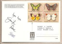 USA - Cartolina Usata Per L'Italia - Farfalle - 1993 * G - Papillons