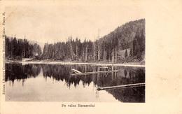 FLOTTAGE DU BOIS / FLOATING TIMBER : PE VALEA BARNARULUI / MUNTII BISTRITEI - ANNÉE / YEAR ~ 1900 - RARE !!! (v-401) - Rumänien