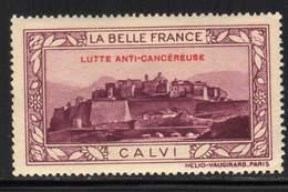 VIGNETTE NEUVE ** LA BELLE FRANCE - LUTTE ANTI-CANCEREUSE - CALVI - Commemorative Labels