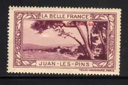 VIGNETTE NEUVE ** LA BELLE FRANCE - LUTTE ANTI-CANCEREUSE - JUAN LES PINS - Commemorative Labels