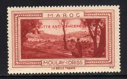 VIGNETTE NEUVE ** LA BELLE FRANCE - LUTTE ANTI-CANCEREUSE - MOULAY IDRISS - Commemorative Labels