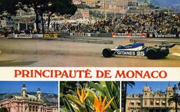 SPORTS AUTOMOBILE  L 50   / GRAND PRIX DE MONACO      CPM / CPSM 10 X 15 - Grand Prix / F1