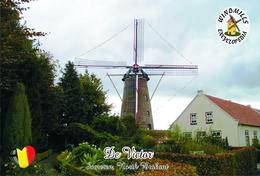 Carte Postale, Moulin à Vent, Windmills Encyclopedia, Belgium (North Brabant), Someren, De Evereet - Moulins à Vent