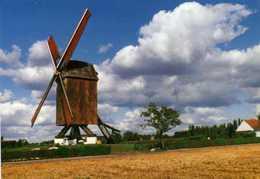 SINT-MARTENS-LATEM (O.Vl.) - Molen/moulin - Houten Standaardmolen (Koutermolen) Na Verplaatsing / Restauratie (1984) - Sint-Martens-Latem