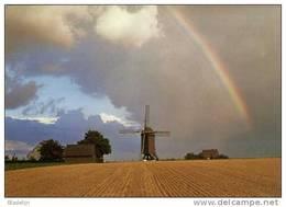 HUISE Bij Zingem (O.Vl.) - Molen/moulin - De Huisekoutermolen Met Regenboog En Landschap (1976). TOPKAART! - Zingem