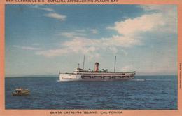 BATEAU - Steamer - S.S. CATALINA - Schiffe