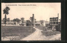 Cartolina Salsomaggiore, Pozzi Artesiani Delle R. R. Saline - Italia