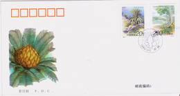 China Stamps 1996-7 Cycads FDC - 1949 - ... Repubblica Popolare