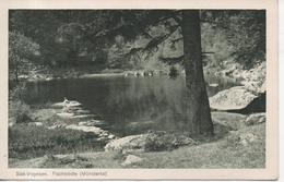 CPA - SUD VOGESEN - FISCHBODLE - MUNSTERTAL  - T. B. E. - Autres Communes