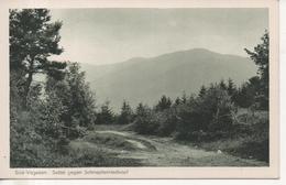 CPA - SUD VOGESEN - SATTEL GEGEN SCHNEPFENRIEDKOPF  - T. B. E. - Autres Communes