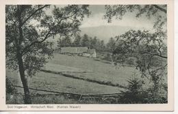 CPA - SUD VOGESEN - WIRTSCHAFT RIED - KAHLEN WASEN  - T. B. E. - Autres Communes